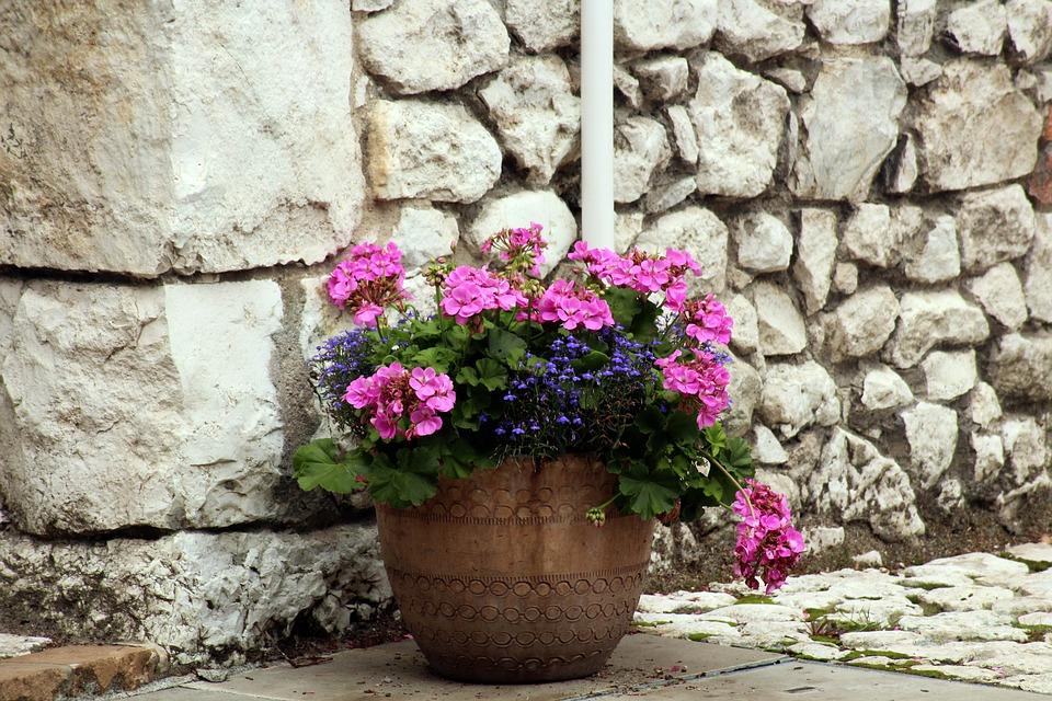 květináč u zdi
